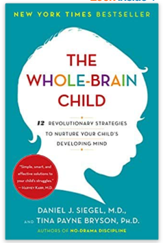 whole brain child parenting styles book